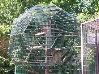 Voliere als Ikosaederstumpf im Bochumer Tierpark