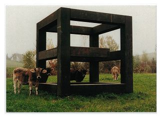 Stilleben mit Natur, Geometrie und Kunst: E Würfel von Georg MALIN