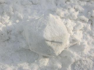 Schnee-Ikosaeder